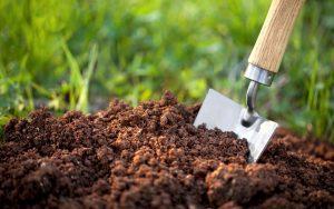 اثرات مثبت کود آمینو اسید بر حاصلخیزی خاک