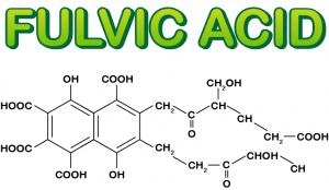 ساختار شیمیایی فولویک اسید