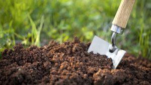 چگونگی تنظیم PH خاک و اهمیت آن